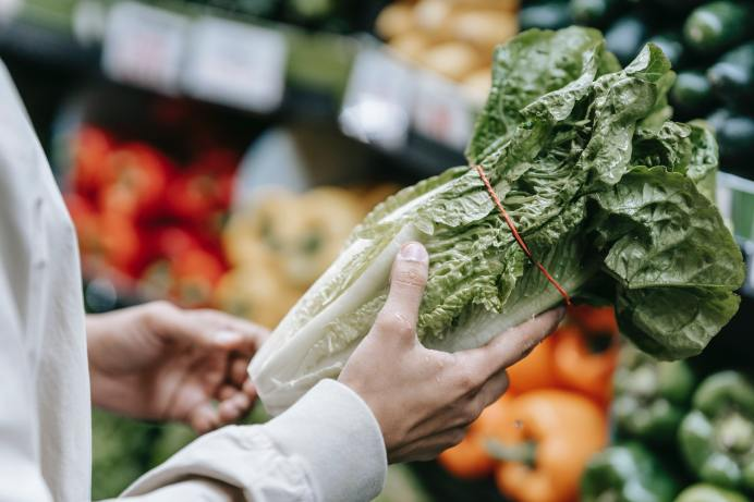 Salade flétrie: Quoi faire pour lui redonner vie?